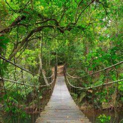 Parc national de Khao Yai